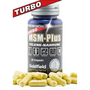 Turbo MSM-Plus 60 kaps. bez příchuti - Goldfield