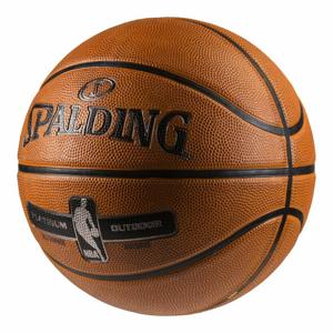 Spalding NBA Platinum veľ. 7