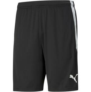 Šortky Puma teamLIGA Training Shorts