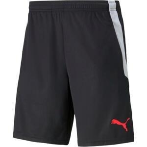 Šortky Puma teamLIGA Training Shorts 2