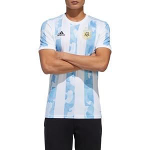 Argentinská reprezentace