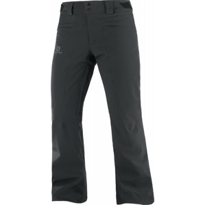 Pánské kalhoty Salomon Untracked Pant M Velikost: XL / Délka kalhot: regular / Barva: černá