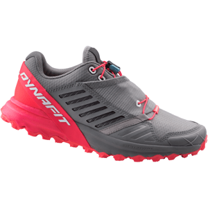 Dámské boty Dynafit Alpine Pro W Velikost bot (EU): 39 / Barva: červená/šedá
