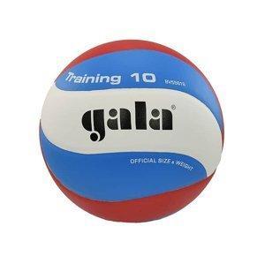 Volejbalový míč GALA Training 10 BV 5561 S