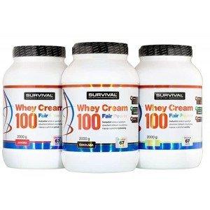 Whey Cream 100 Fair Power jahoda 2000g