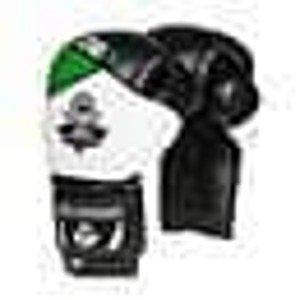 Boxerské rukavice DBX BUSHIDO B-2v6 14 z.