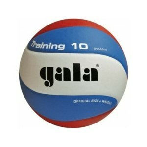 Volejbalový míč Gala Training 10 panelů