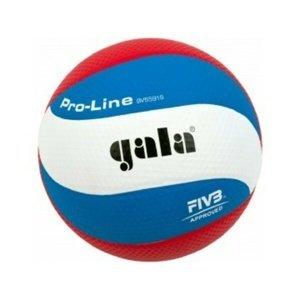 Volejbalový míč Gala Pro-line 10 panelů