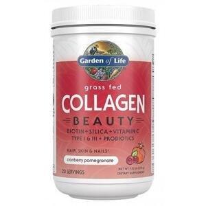 Garden of Life Collagen Beauty 270 g - jahoda - citron
