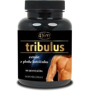 4Slim Tribulus Terrestris Fruit 500 mg 90kapslí