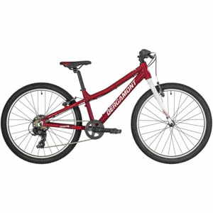 Bergamont REVOX 24 LITE  24 - Dětské horské kolo
