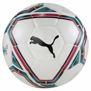 Puma TEAMFINAL 21 LITTE BALL  4 - Fotbalový míč